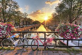 לימודים בהולנד
